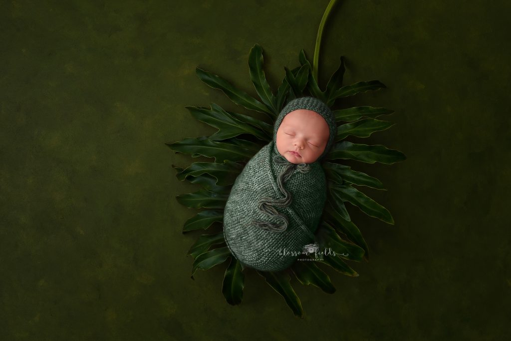 Newborn Photography by Blossom Fields Photography