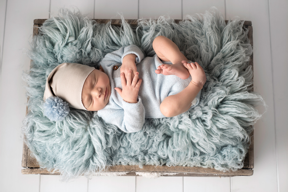Newborn Photography by Little bird photography