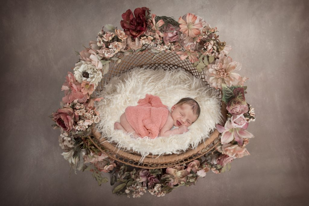 Newborn Photography by Selena Adams Photography